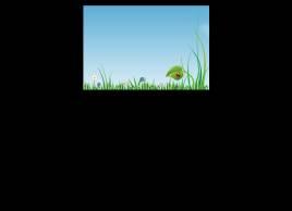 绿叶上爬行的七星瓢虫flash动画下载