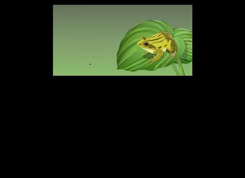 吃虫子的青蛙flash动画素材