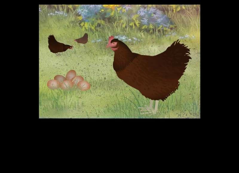 鸡蛋和小鸡flash动画素材