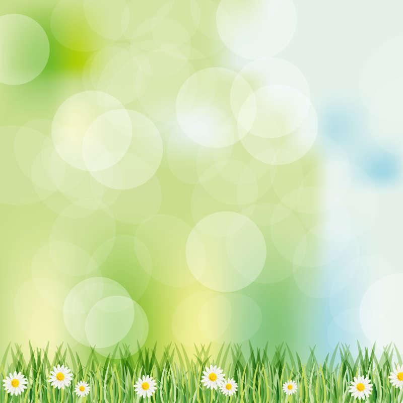 梦幻色彩的雏菊花高清背景图片jpg下载