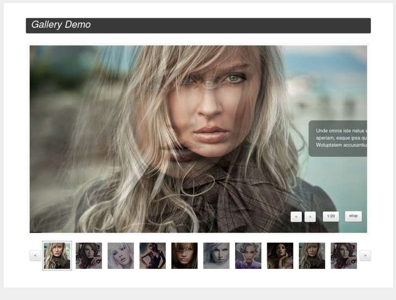 jquery Gallery图片相册幻灯片插件制作精致的图片幻灯片展示特效