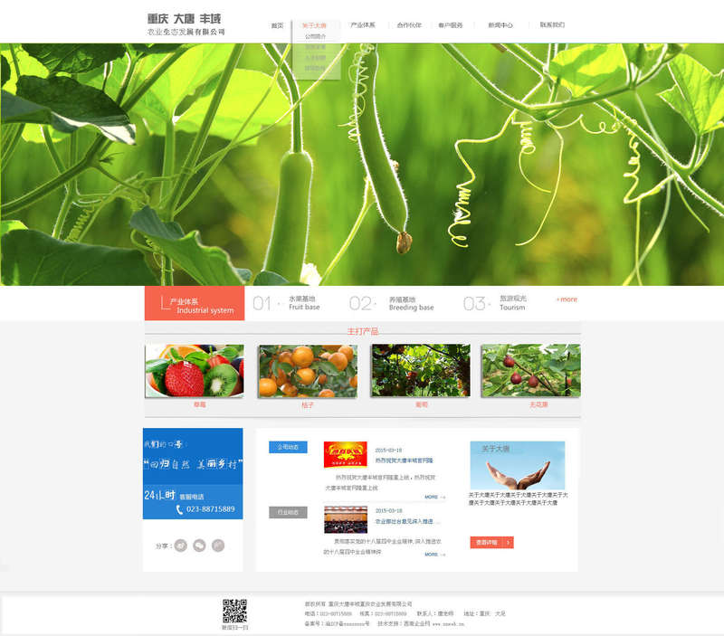 大气的农业食品网站模板psd下载