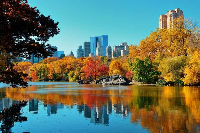 秋天城市公园湖边美景高清图片下载