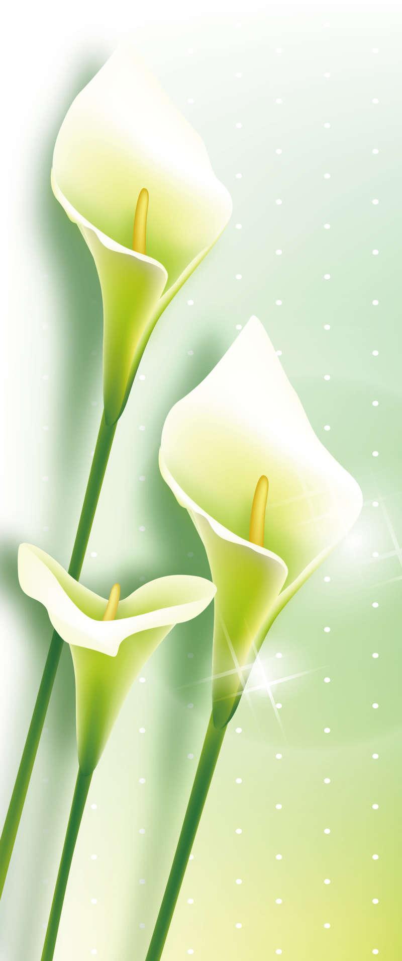美丽的花朵图片_手绘花朵图片_小清新花朵图片