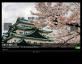jquery scrollpic插件旅游网站按钮控制图片和文字描述左右滚动
